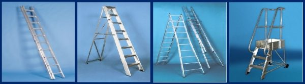 Steps and ladder training